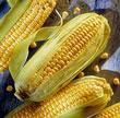 CornBenefits.jpg