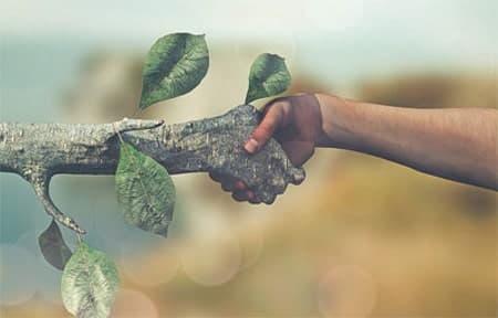 البيئة والاقتصاد علاقة تبادلية