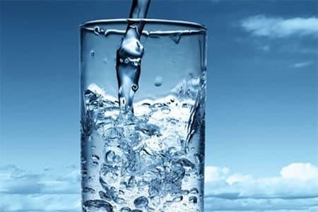 لماذا الكائن الحى يتكون من نسبة عالية من الماء