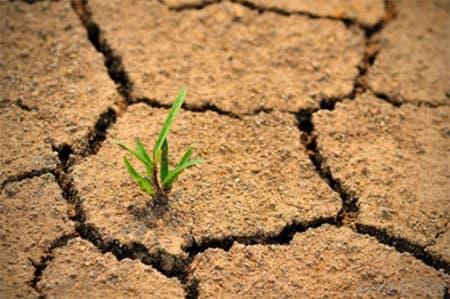 for Soil erosion in hindi