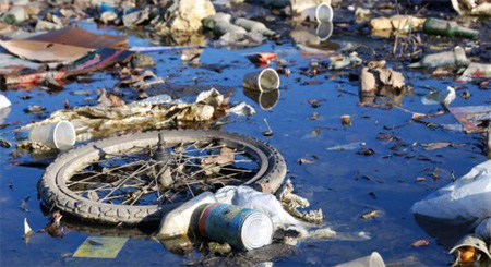plastic pollution essay
