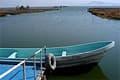 تلوث الماء  ومعالجته WaterPollutionMain